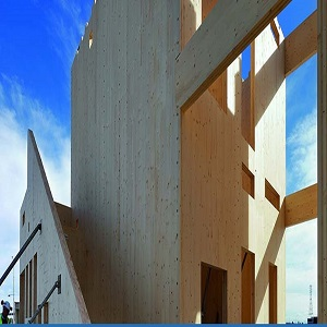 Australia and New Zealand Cross Laminated Timber (CLT) Market Report 2021, Industry Trends, Share, Size, Demand and Future Scope